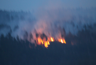 Focul de pădure, la orele 19,00