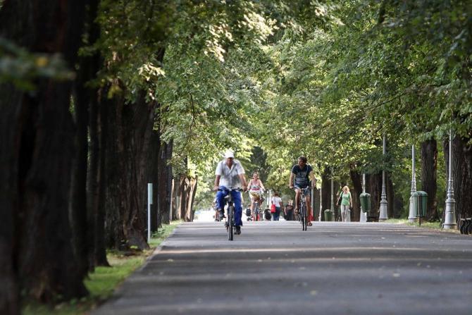 Piste de biciclete în București. O nouă victorie a PMB, în instanță