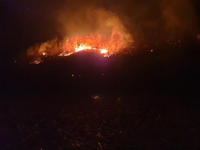 Incendiu de pădure la Mălâncrav. SURSA: ISU Sibiu