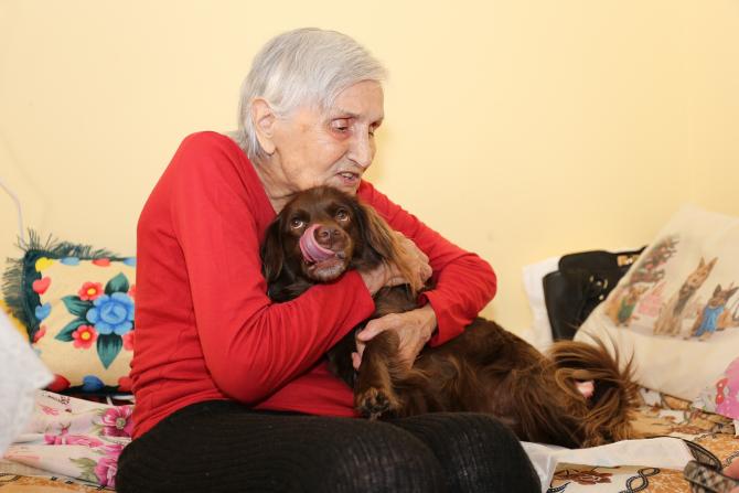 terapie-asistata-vârstnici-sector 6