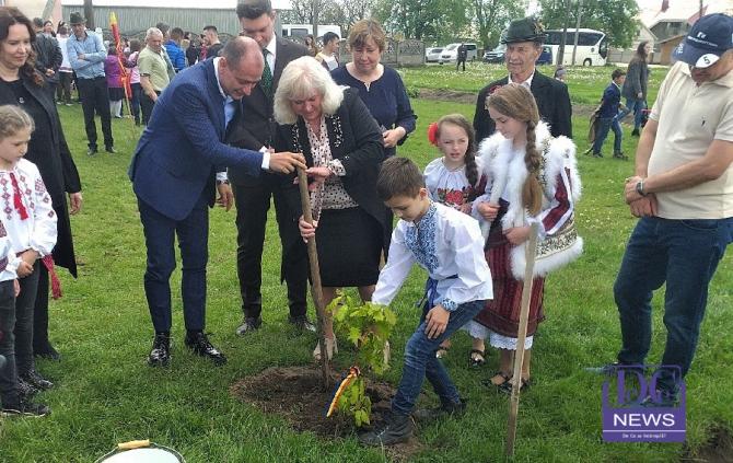 Copac plantat în fața viitoarei case de Cultură