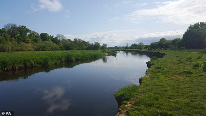 Râurile din Anglia sunt poluate cu cocaină, ketamina și lidocaină