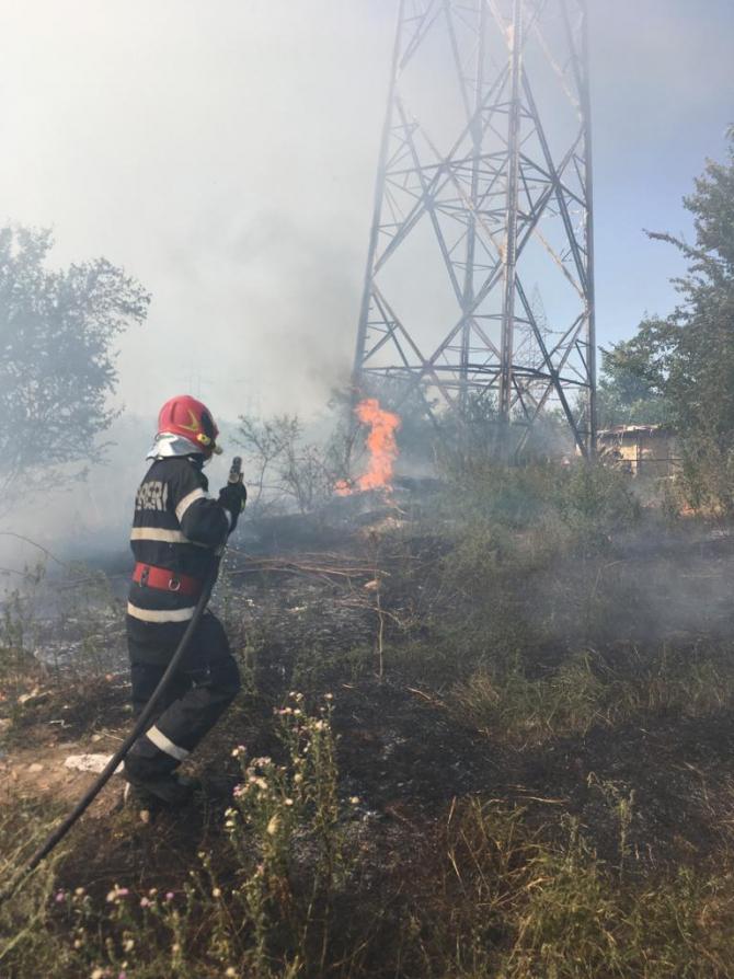 Incendiu de vegetație la Tulcea. FOTO: ISU Tulcea.