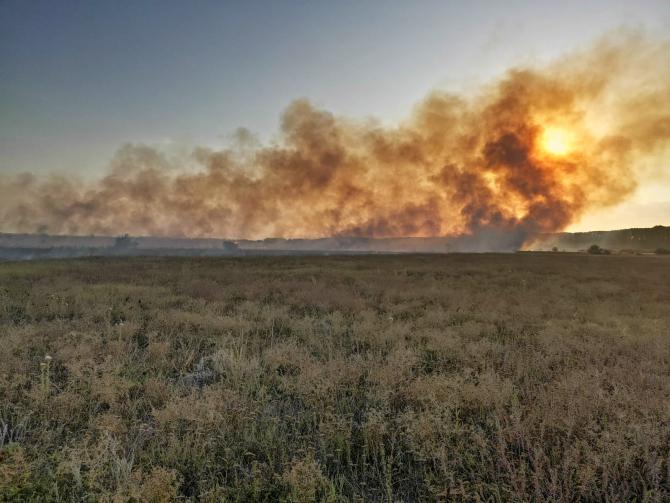 Incendiu de vegetație în județul Tulcea. FOTO: ISU Tulcea.