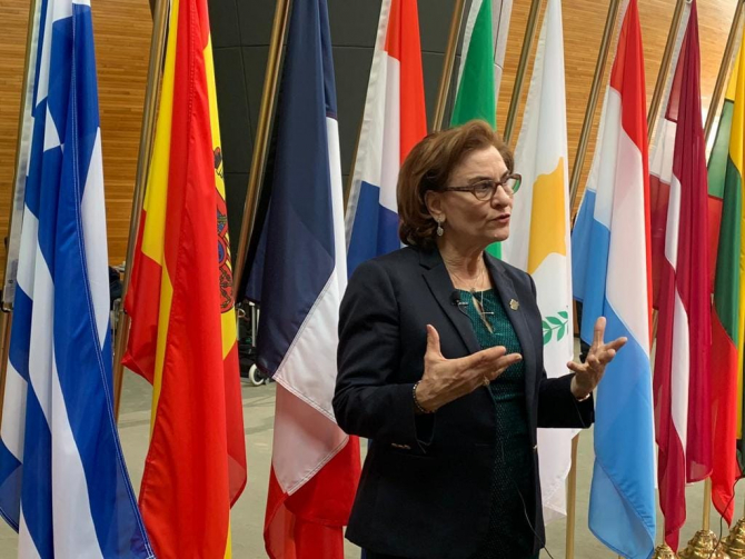 Europarlamentar Maria Grapini