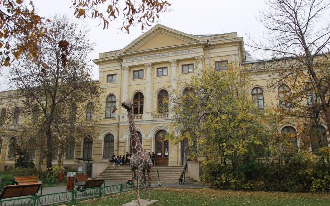 Muzeul Național de Istorie Naturală Grigore Antipa  Foto: Crișan Andreescu