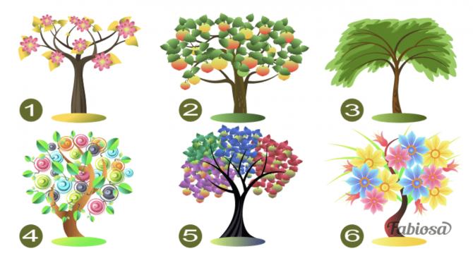 test personalitate copac