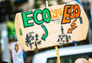 Moda raw-vegan ajută în lupta cu încălzirea globală?