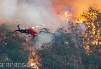Incendii puternice în Australia. Foto: Agerpres