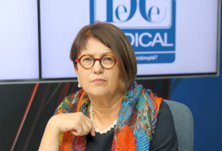 Prof dr Sarah Ferber