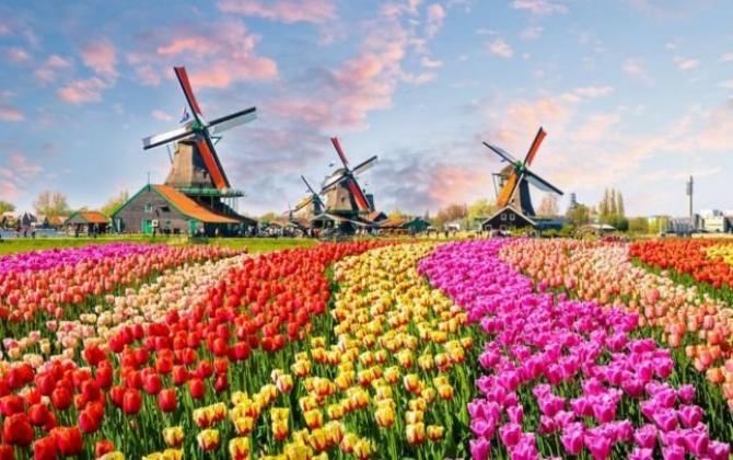 """Olanda şi-a schimbat numele şi va purta de acum titulatura oficială de """"Ţările de Jos"""""""