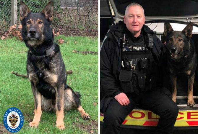 Sursa foto: West Midlands Police / Twitter