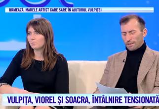 """Sursa foto: captură video """"Acces Direct"""" -  Antena 1"""