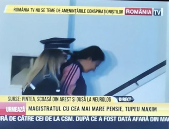 (w670) Pintea