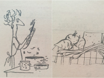 Sursa foto: Calendar 1985, editat de REECOOP și tipărit de Întreprinderea Poligrafică Galați