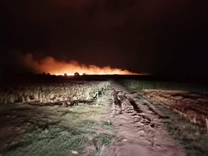 Incendiu de vegetație. Foto: ISU Teleorman