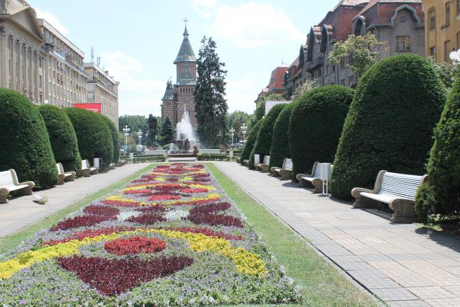 Timisoara, catedrala  Foto: Crișan Andreescu