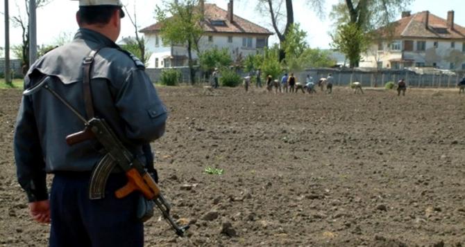ANP a decis ca deținuții să nu mai fie scoși la muncă  Foto: inpactpress
