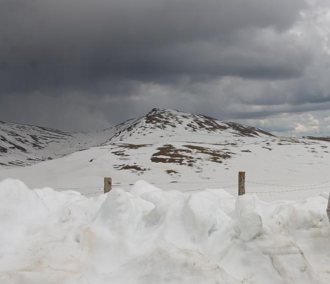 Meteo zapada  Foto: Crișan Andreescu