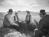 ziua culturii nationale program online filme romanesti
