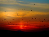 """Fenomenul """"Sun pillar"""", la apusul Soarelui în România.  foto: Pixbay"""