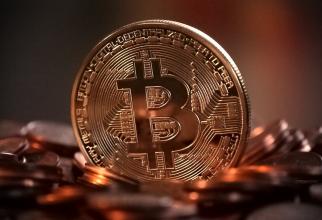 un britanic a aruncat unitatea de bitcoini vrea sa excaveze Sursa: Pixbay
