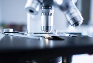 Dr. Andrei Tudor Rogoz a explicat tot ce se ştie despre noul coronavirus, după un an de pandemie. Sursa: Pexels