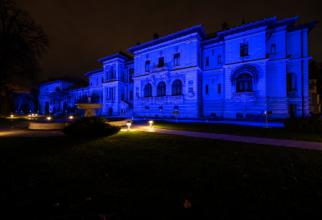 Culisele relaţiei dintre SUA şi Palatul Cotroceni. Foto: Crişan Andreescu