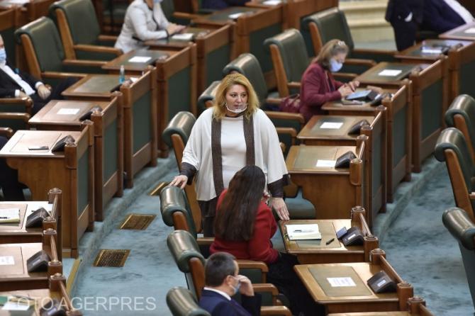 Diana Şoşoacă a depus plângere după moartea lui Bogdan Stanoevici