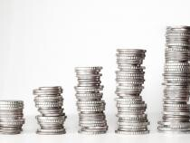 Vâlcu: Creşterea alocaţiilor, ca la bancă. Sursa: Pixabay