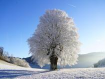 ANM, prognoza meteo în următoarele patru săptămâni. Temperaturi mai ridicate decât cele normale. Foto: Pixabay.com.