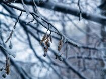 Elena Mateescu anunţă schimbarea vremii. Diferenţe de 20 de grade de la o zi la alta. Sursa: Pixabay