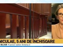 Ioan Niculae, cinci ani de închisoare / Foto captură Antena 3