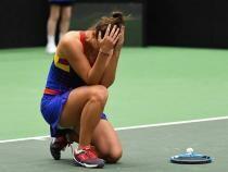 Irina Begu, eliminată de la Australian Open de Nina Stoijanovici