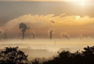 Studiu britanic: Poluarea aerului îți poate afecta capacitatea cognitivă  /  Sursă foto: Pixbay