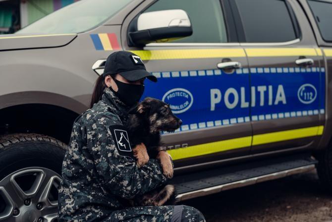 Poliția Animalelor Foto: Facebook Poliția Română