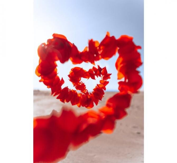 "RO Vaccinare a găsit ""cadoul perfect"" de Valentine's Day / Foto Pexels"
