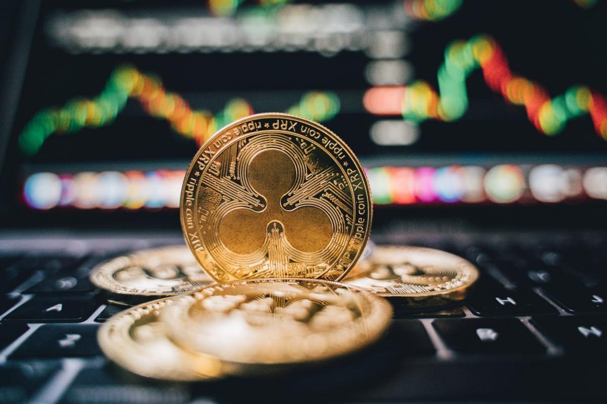 investiții în servicii bitcoin investiție bitcoin legitimă