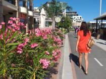 Bulgaria, reguli de vară pentru turiști: O umbrelă poate fi folosită de cel mult două persoane sau de membrii unei singure familii - Foto DC News