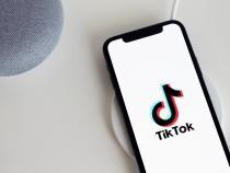 Fenomentul TikTok și mobilizarea maselor. Protestul din Arad a avut aproape 100.000 de aprecieri  /  Foto cu caracter ilustrativ: Pixabay