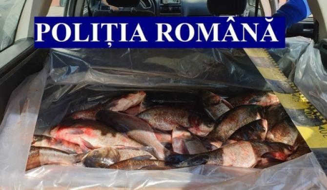 ACTION DAY – FISHERY / Foto Poliția Română