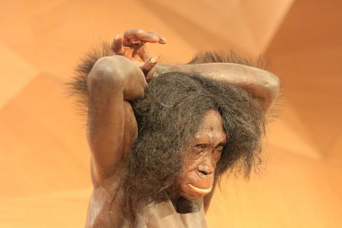 Noi descoperiri despre neanderthalieni. Perioada în care au dispărut ar putea fi mai veche  /  Foto cu caracter ilustrativ: Pixabay