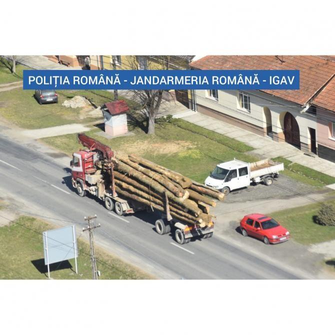 Foto: IPJ Caraș-Severin