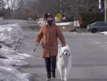 captură video: Youtube CTV NEWS