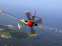 Un pilot a supravieţuit 38 de zile în jungla amazoniană, după ce aeronava sa a explodat  /  Foto cu caracter ilustrativ: Pixabay