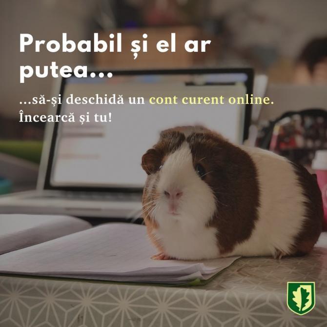 Foto: CEC Bank / Facebook