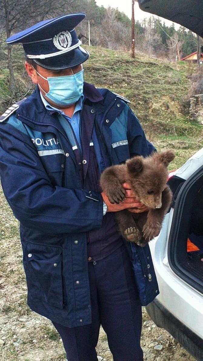 Sursa foto: Poliția Română/Facebook