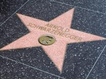 Arnold Schwarzenegger, rol nou într-un serial de spionaj de pe Netflix  /  Foto cu caracter ilustrativ: Pixabay