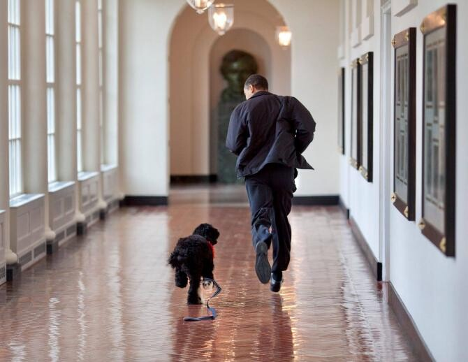 A murit Bo, câinele familiei Obama. Sursă foto: Barack Obama Facebook