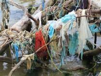 Pixabay / Cercetătorii de la Universitatea Tehnică din Cluj lucrează la un sistem de curățare a oceanelor